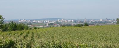 Reims vue depuis la route d'Epernay