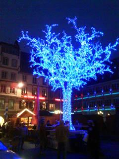 arbre bleu Strasbourg